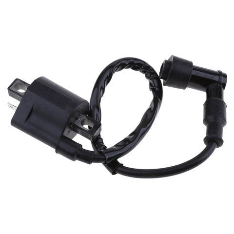 Image of Black Ignition Coil with CDI for Suzuki Quadmaster LT-A50 LTA50 1983-1984
