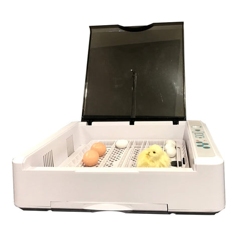 Image of 36 Egg Incubator Hatcher Digital Poultry Chickens Ducks Incubators UK Plug