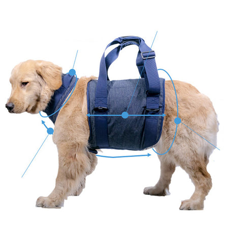 Dog Hip Support Harness Dog Lift Support Harness for Small to Medium Dog S