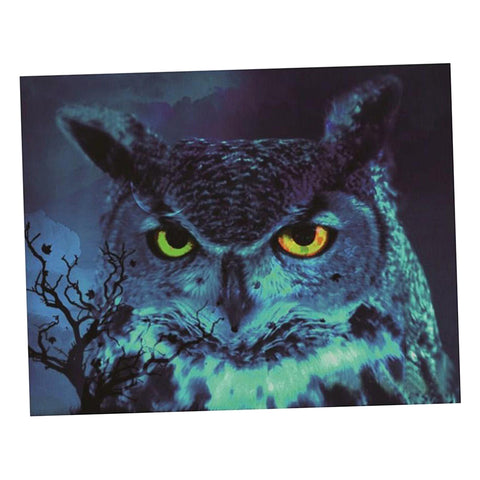 Full Drill DIY 5D Diamond Painting Embroidery Cross Stitch Owl