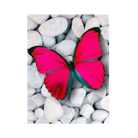 Image of DIY 5D Diamond Painting Embroidery Cross Stitch for Home Decor Butterfly