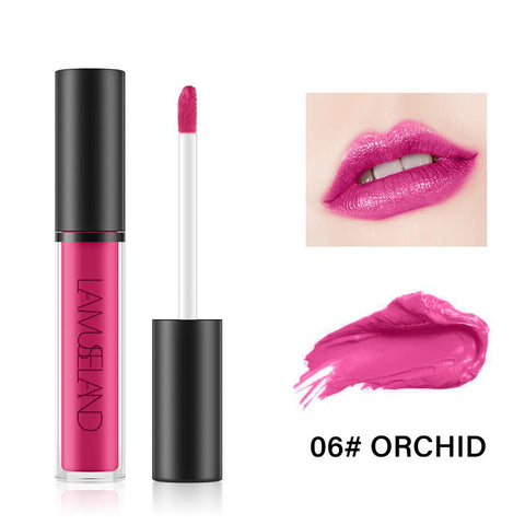 7 Colors Long Lasting Waterproof Liquid Lipstick Matte Lip Gloss LA01-06