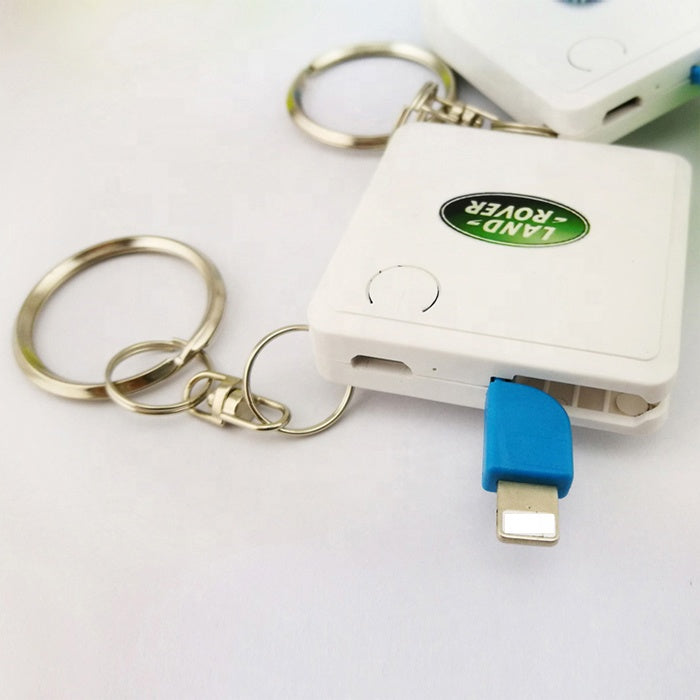 P&T 2019 mini keychain power bank custom logo one time use power bank 1000mah with cable