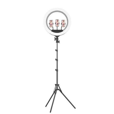 P&T RK59 Led ring light with tripod stand, 21inch ring light with remote and usb port