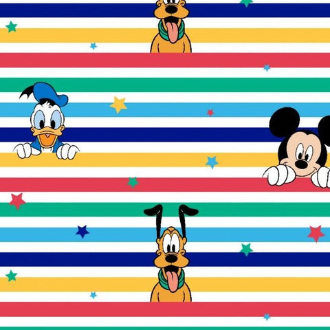 Licensed Disney Characters Rainbow Stripe Printed Cotton Jersey Fabric