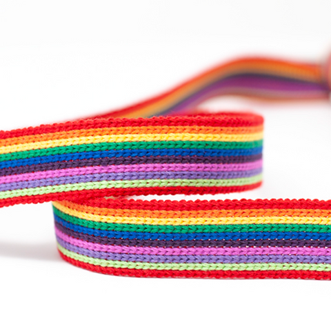 25mm Webbing - Rainbow Stripe