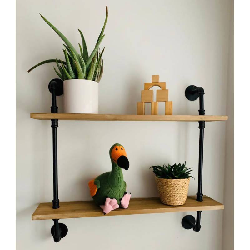 Green and Orange Knitted Dodo on shelf with plants