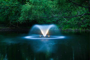 The Scott Aerator DA-20 Display Aerator Pond Water Fountain 3 HP Keeps Your Pond Clean