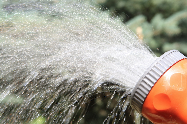 10 Simple Water Practices For Gardening