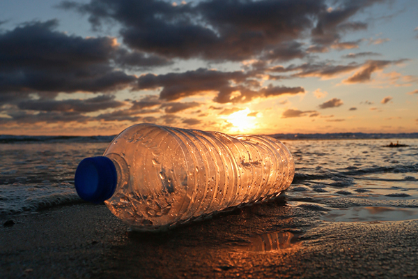 Top Ten Reasons to STOP Using Plastic Water Bottles