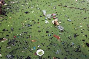 Water Pollution: How Big A Problem Is It?