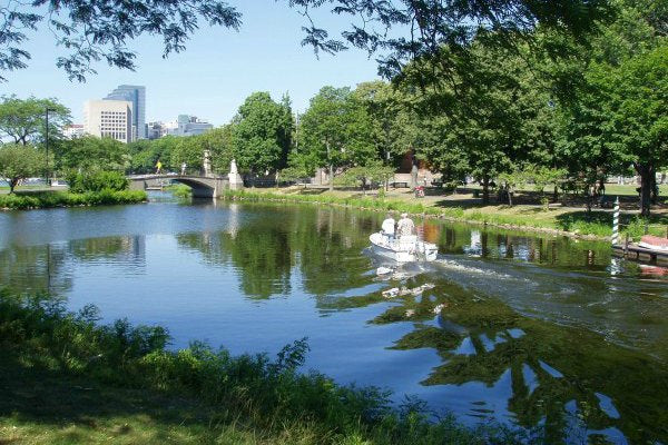 A sunny day on the Charles River Esplanade, Boston MA - The Charles River is much cleaner now.