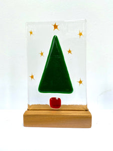 Christmas Trees - medium