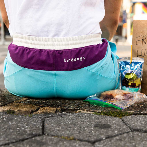 Birddogs The April Big Cannons Blue Purple White Gym Shorts Purple Liner Sitting Lunch Preorder