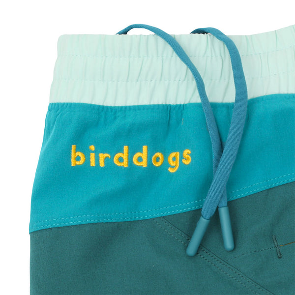 Birddogs Tommy Boys Green Blue Light Green Gym Shorts Blue Liner Waistband