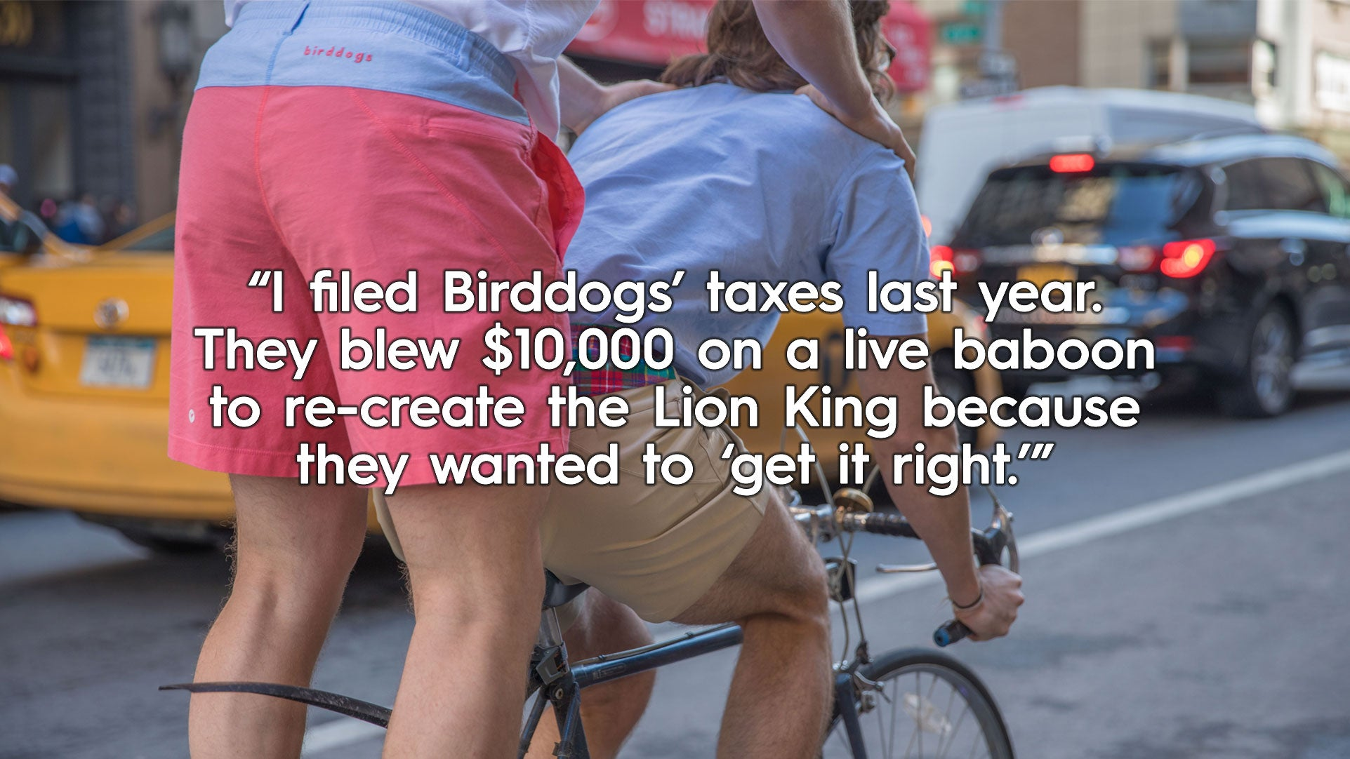I filed Birddogs' taxes last year. They blew $10,000 on a live baboon to re-create the Lion King because they wanted to 'get it right'