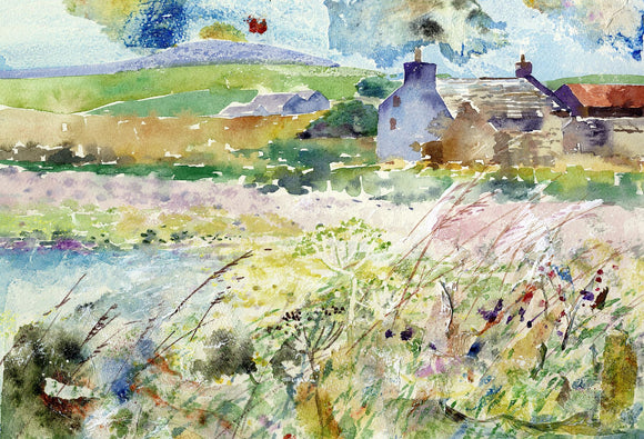 Old farmhouse with grasses in Rendall