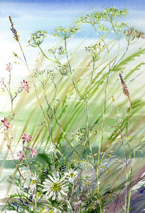 Wildflowers in the Breeze