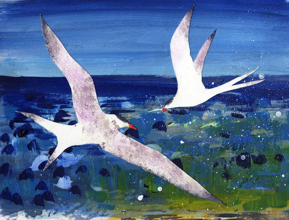 White terns against the dark blue sea