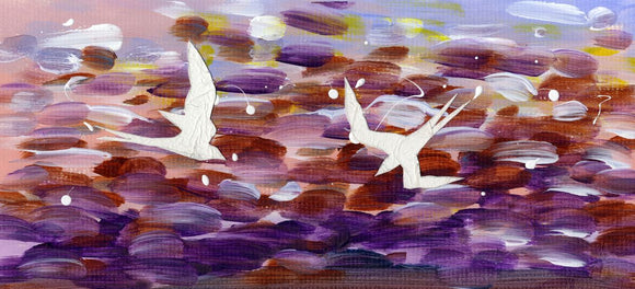 Diving terns against a purple sea