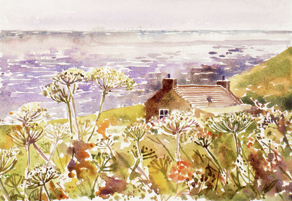 Cottage and cow parsley