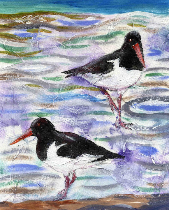 Two oystercatchers on the shoreline