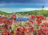 Poppies at The Ouse, Finstown, Orkney