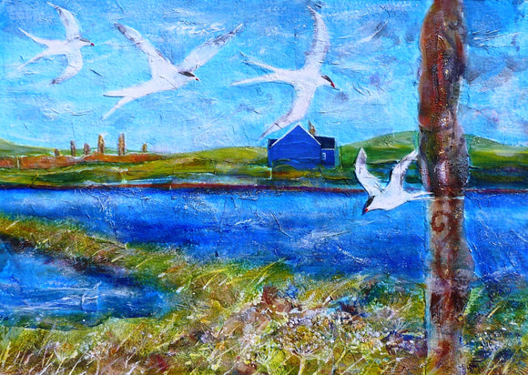 Cards - Blue House with Terns
