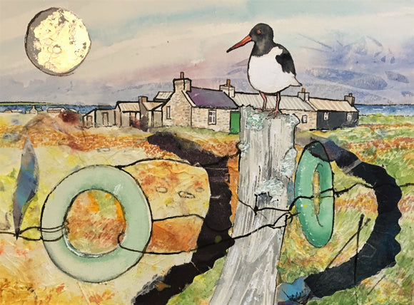 Cards - Cottage and Oystercatcher North Ronaldsay