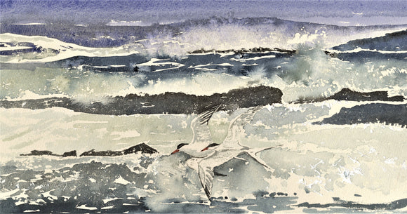 Stormy sea with terns