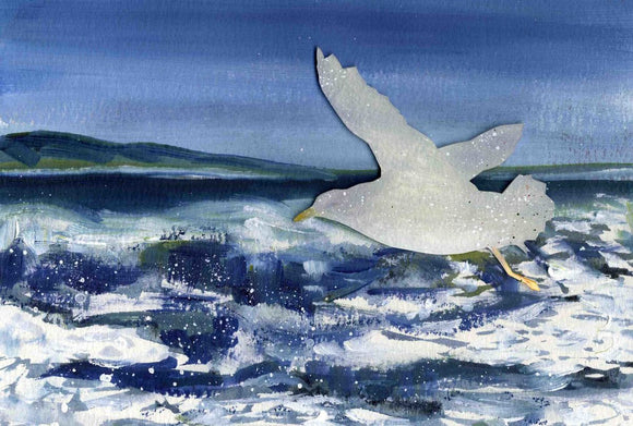 Seagull and waves, Orkney