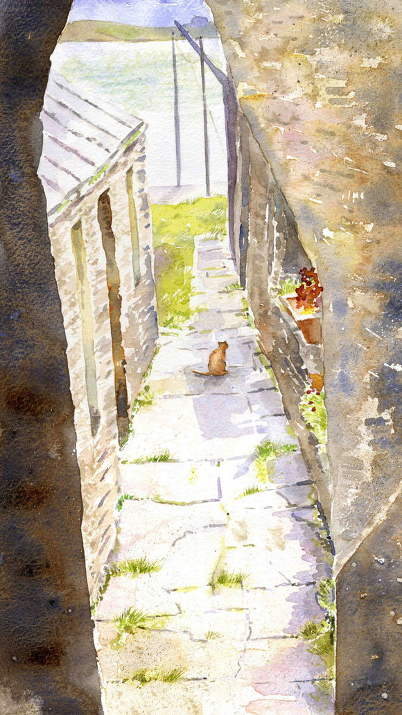 Ginger Tom, Stromness