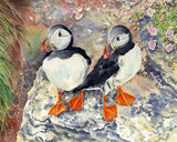 Puffin twins