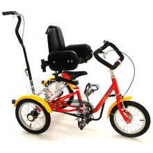 Rear Steer Muskateer tricycle with special needs support