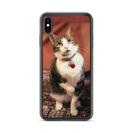 iPhone Curious Kitty Case, Premium Quality Case, iPhone Curious Kitty Cover, iPhone Custom Design, iPhone 11 Pro Max, iPhone XS Max