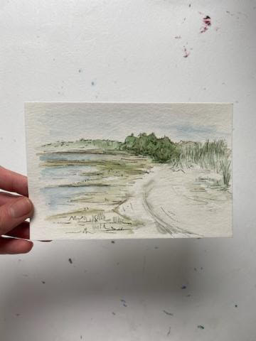 Boatmeadow Sketches