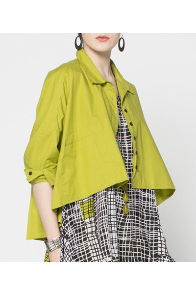Selavie Shirt in Lime Carnaby