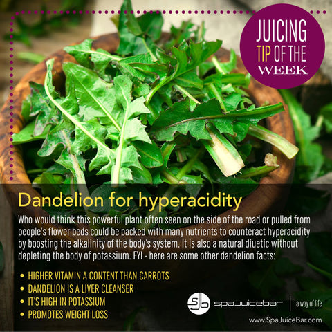 SpaJuiceBar Juice Tip of the Week Dandelion
