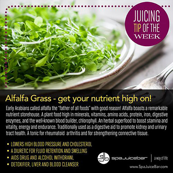 Infographic Juice Tip of the Week Alfalfa Grass