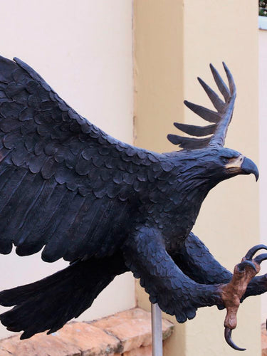 Black Eagle (Life-Size)