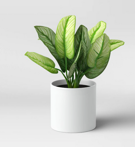 Fake plant from Target