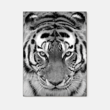 Load image into Gallery viewer, Wildlife : Four