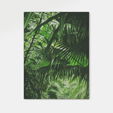 Load image into Gallery viewer, Forest : Two