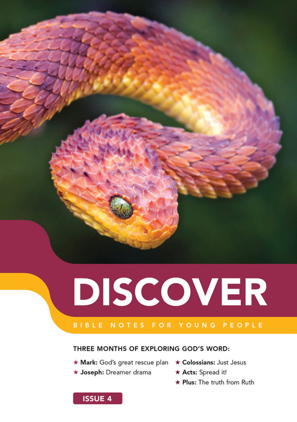 Discover #4