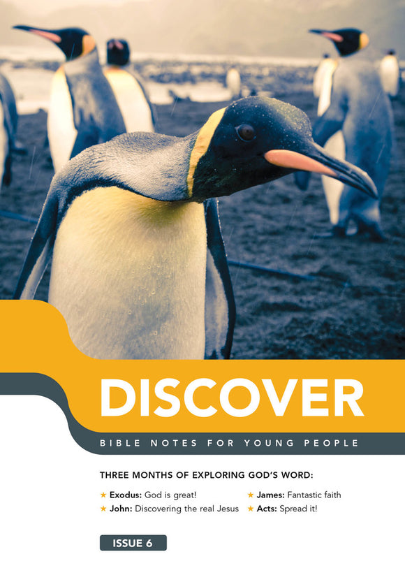 Discover - Book 6