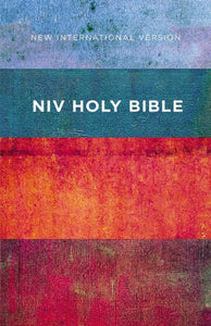 NIV Bible Red/Blue Stripes