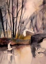 Load image into Gallery viewer, Original Watercolour Painting of Swans in Marlay Park, Rathfarnham, Dublin, Ireland, by Irish Artist Cathal O'Briain. Free P&P with Padded Protection within Ireland.