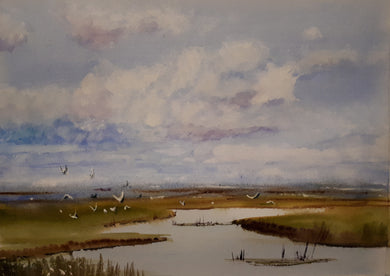 Leitrim Wetlands (A3 Framed Original)