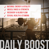 ENVISIONS: Daily Boost-Testosterone Booster - Not Sold out! Exclusively sold on eBay! - High T