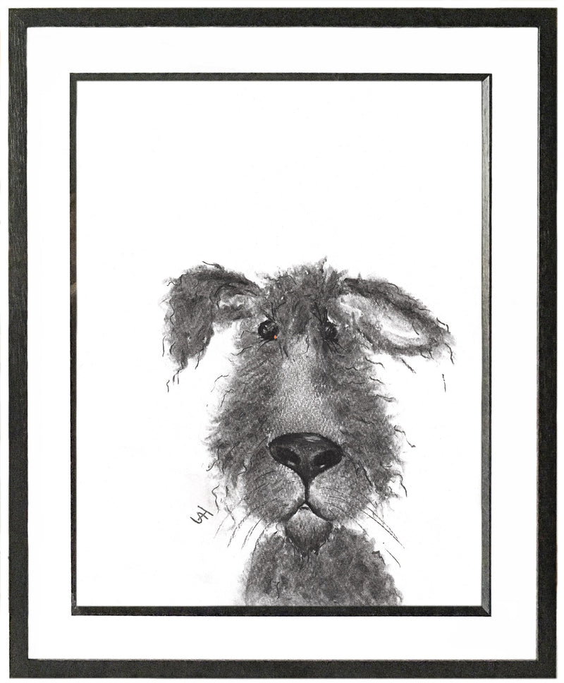 Archie Framed Shaggy Dog Illustration | GORGEOUS GEORGE